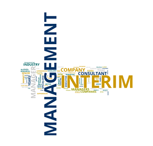 Interim Management Aukema - dhr. Andreas Aukema